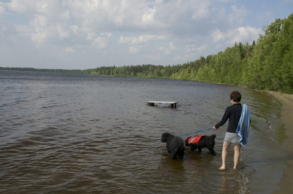 barack-obama-portuguese-water-dog
